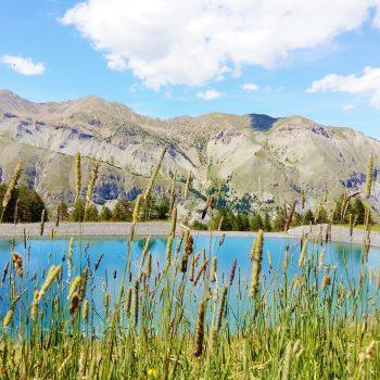 Jeu entre l'herbe et le lac