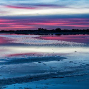 Lumière du soir sur l'étang