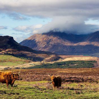 Une ambiance Écossaise