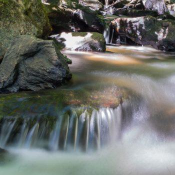 Fraîcheur et couleurs de la Corrèze