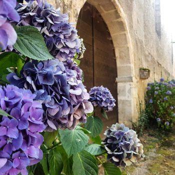 Église de Mortemart.