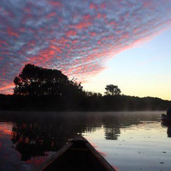 Le cher en canöe canadien au petit matin.